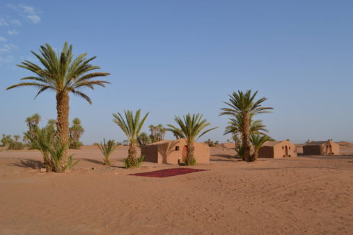 Sachara