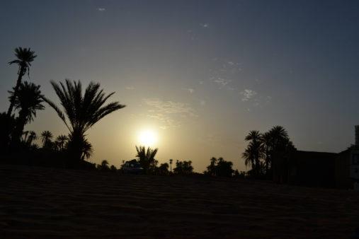 Naktis Sacharoje