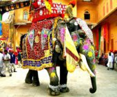 Decorated_Indian_elephant