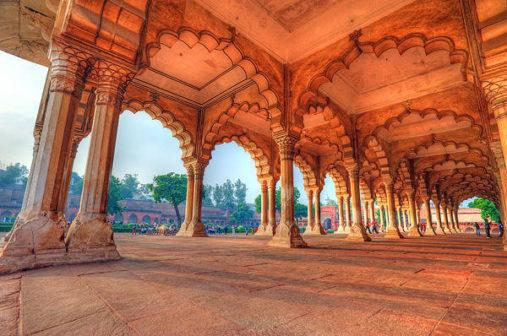 Raudonasis fortas, Agra